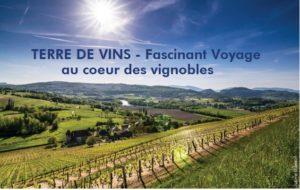 Terre de Vins : Supplément Oenotourisme