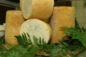 Auvergne Rhône-Alpes, le plus grand plateau de fromages AOC de France