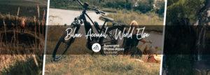 Bilan : Accueil World Else  du 6 au 10 juillet