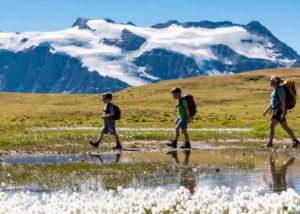 Montagne été : Parcs naturels – Campagnes digitales 2020