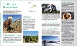 Rédactionnel oenotourisme Terre de Vins Janvier 2021