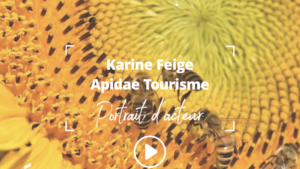 Portrait d'acteur : Karine Feige, directrice générale Apidae Tourisme